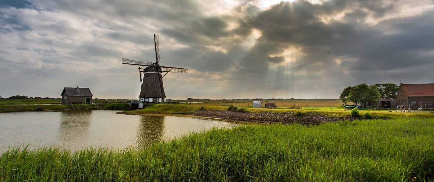 Dutch landscape with windmillDutch landscape with windmill