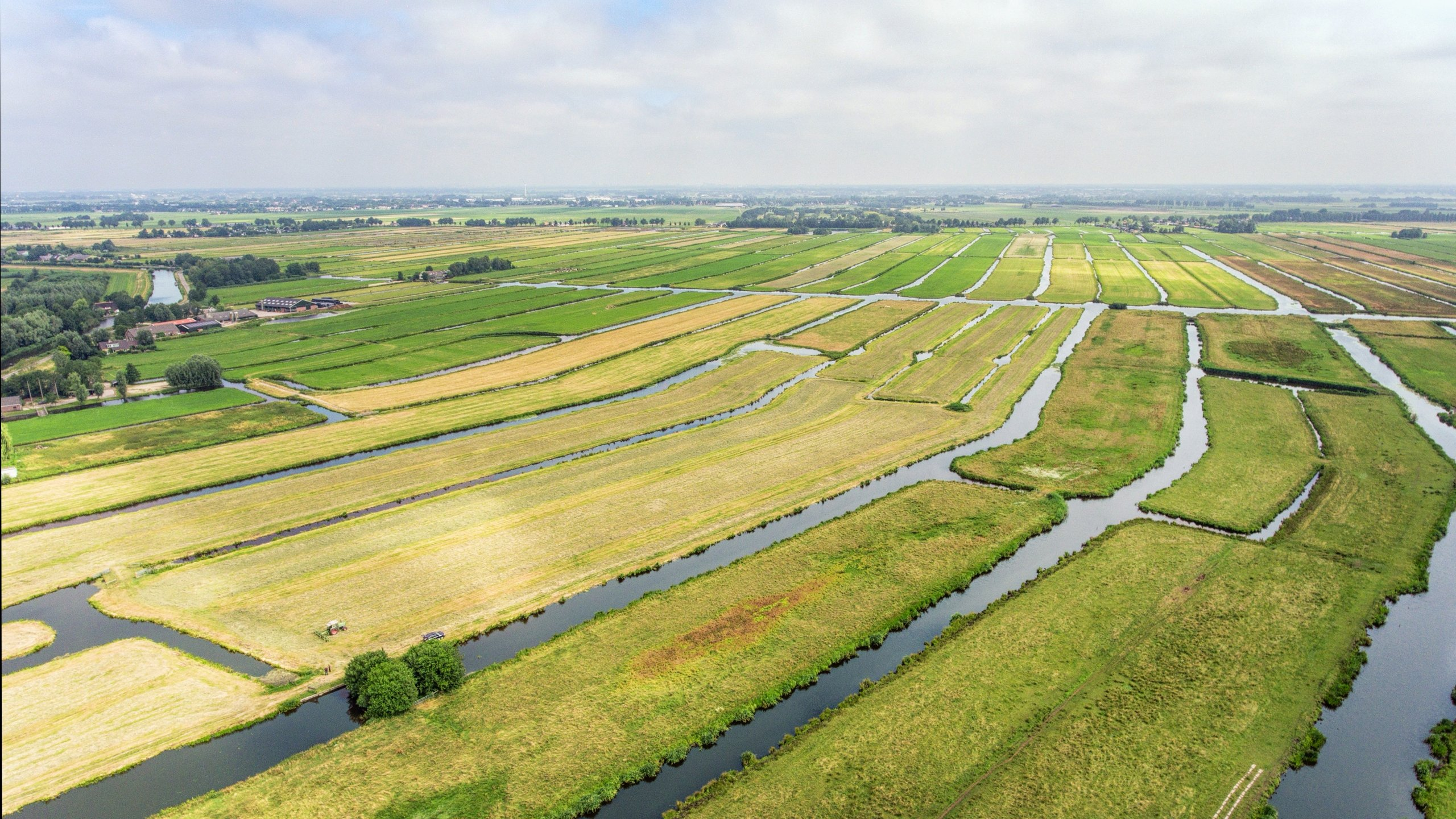 A New Dutch Polder Landscape 4 Returns